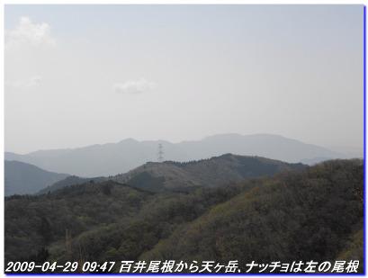090429_hanasetoge_amagatake_01