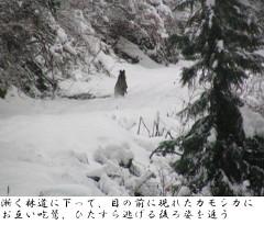 041229_31_mikunidake_amagitouge028