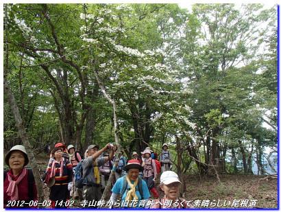 120603_terayamatoge_kumotoriyama_10
