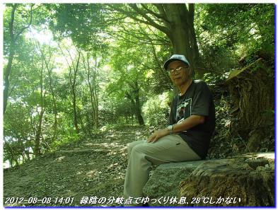 120808_uzumoridai_turukabuto_014