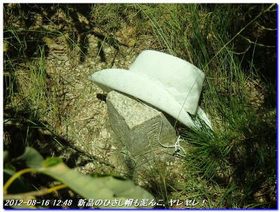 120816_uzumoridaikoen_tettoshitasan