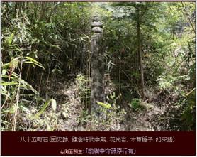 Tyoishi_085