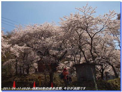 110417_kaiduoosaki_higasuiyama_014