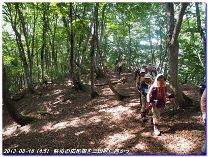 130818_nodabatatoge_mikunitoge_03