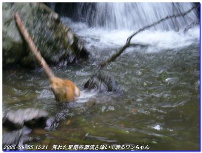 050605_minakoyamaminamione_04