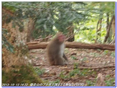 131013_minetokoyama_kamakurayama_10