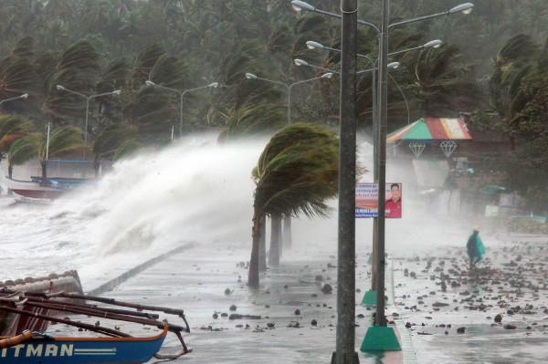Taifu30
