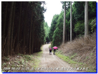 090823_ujiujitoge