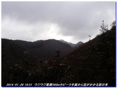 140126_ujiujitoge_hatyoone_01