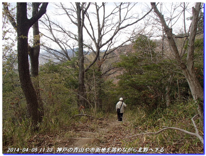 140405_nunobikinotaki_shiroyama_03