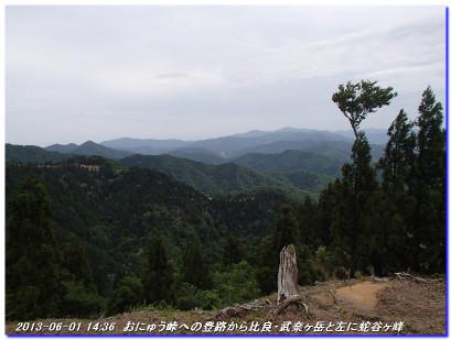 130601_02_kutikubotoge_hyakurigat_2