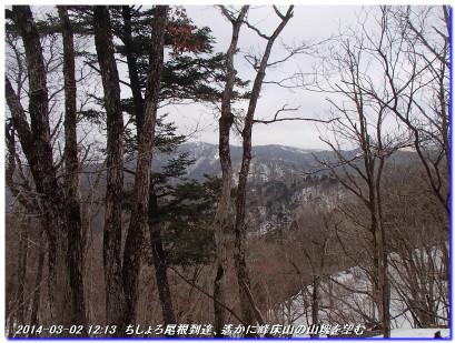 140302_tiseroyama_tawarazakatoge_02