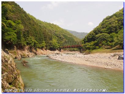 140525_funabikimiti_arashiyamajyu_3