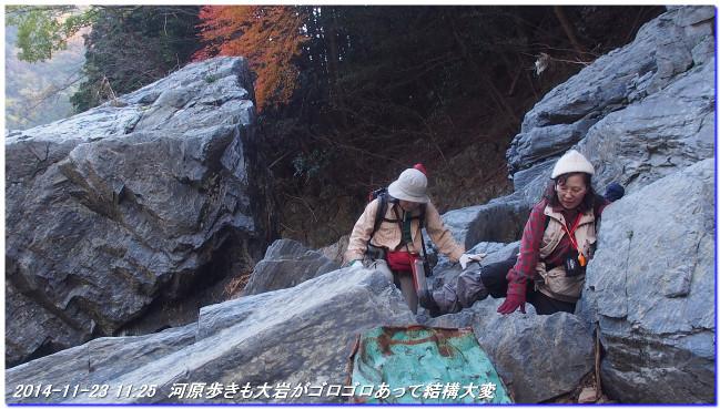 14112312_funabikimiti_hodukyo_mi_11