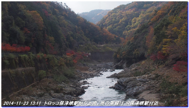 14112312_funabikimiti_hodukyo_mi_15