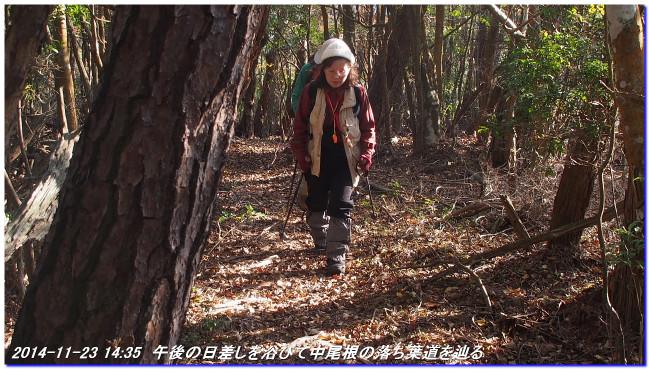 14112312_funabikimiti_hodukyo_mi_16