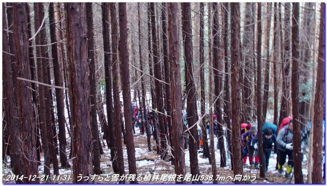 141221t_goishizaka_oyama_yudukito_3