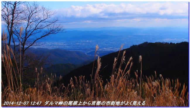 141207_ashimitogeyurimiti_kubinasij