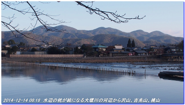 141214_funabikimiti_hodukyo_002