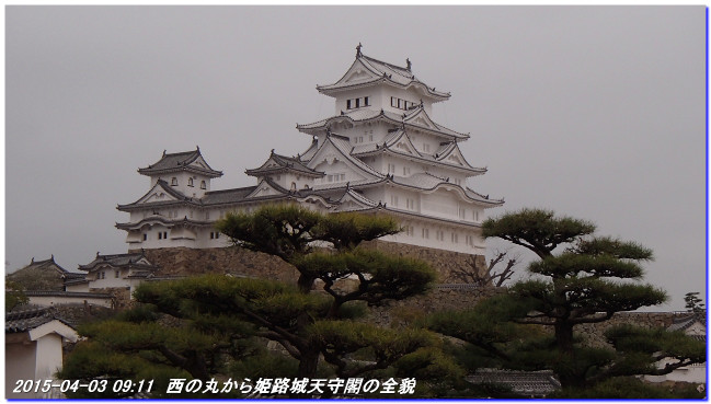 150403_himejijyo_hikonyan_01