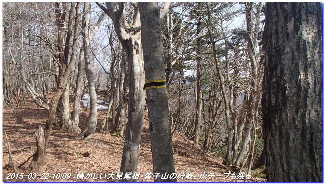 150322_maesakatoge_minakoyamanishio