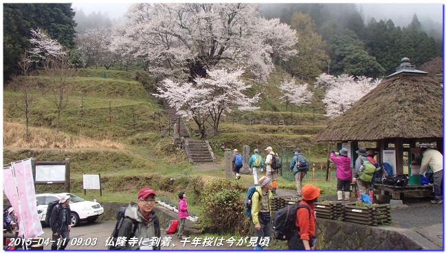 150411_buturyuji_saburogatake_01