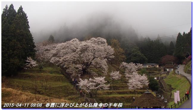150411_buturyuji_saburogatake_02