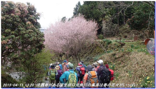150411_buturyuji_saburogatake_07