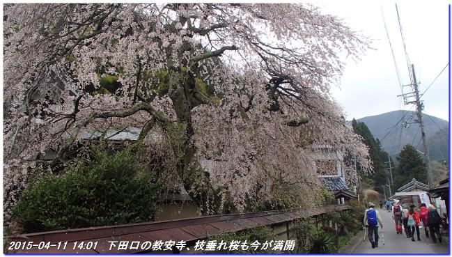 150411_buturyuji_saburogatake_08