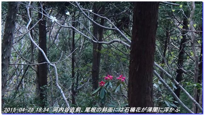 150425_26_notokoe_sanjyodake_oom_11