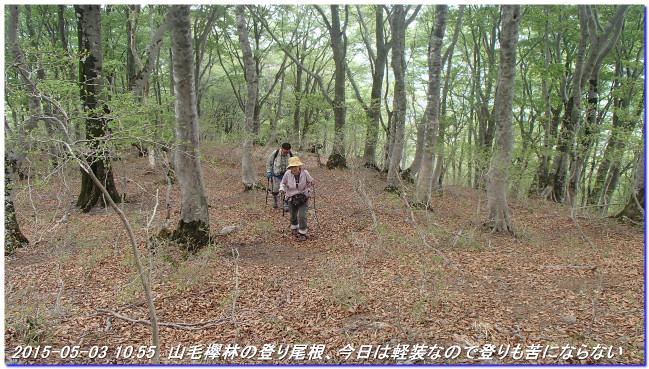 150502_03_sugiyama_bunagatake_was_2