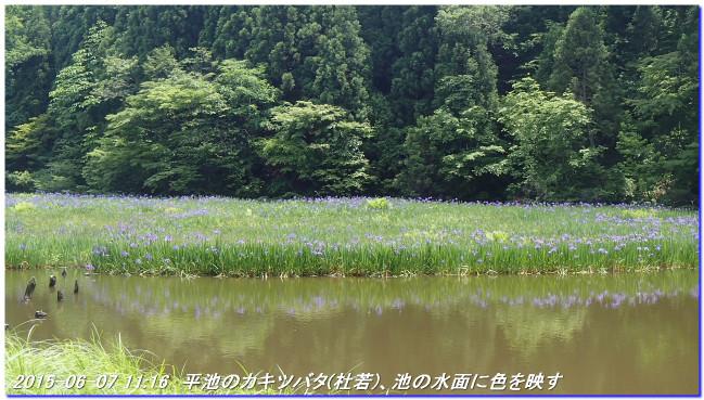 150606_07_takitaniyama_oomikagey_14