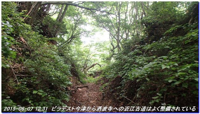 150606_07_takitaniyama_oomikagey_15