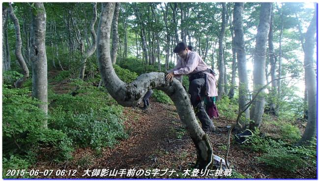 150606_07_takitaniyama_oomikageya_7