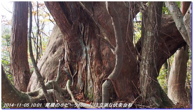 141105_fukamitoge_yugeyama_titanito