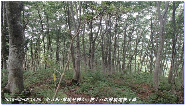 150905_6_oumisaka_nuketo_ootaniya_2