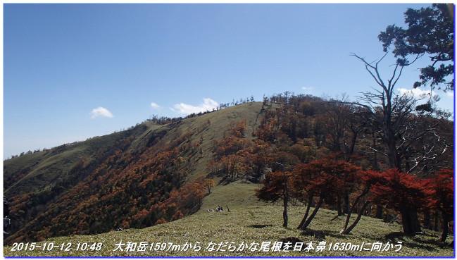 151012_sandukoutiyama_hidegatake_03