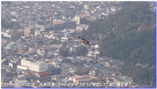 151024_yamashina_daimonjiyama_09