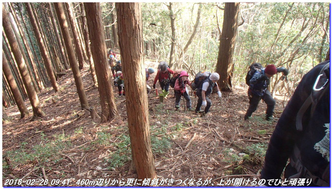 160228_obuse_jizosugiyama_kumotoriy
