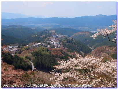 130412_yoshinoyamahanami_029