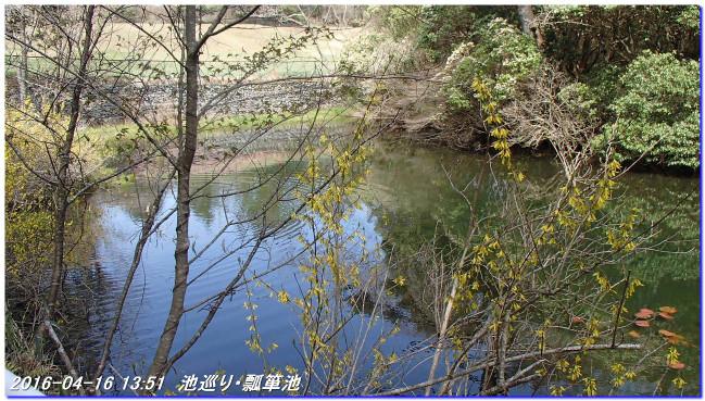 160416_uzumoridai_rokkokouzansyo_13