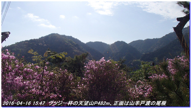 160416_uzumoridai_rokkokouzansyo_14