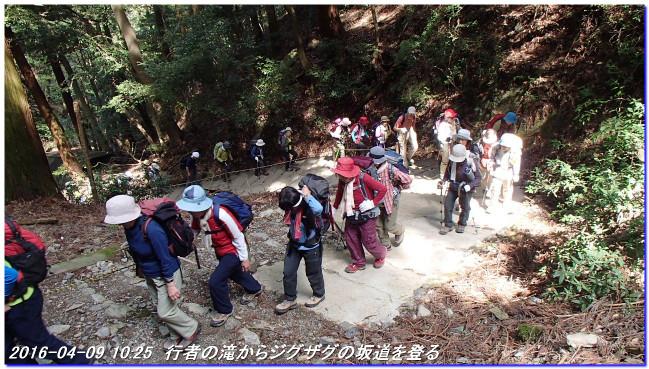 160409_kamidaigo_takatukayama_017