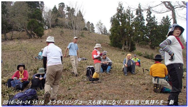 160426_koundoyama_sangokudake_045