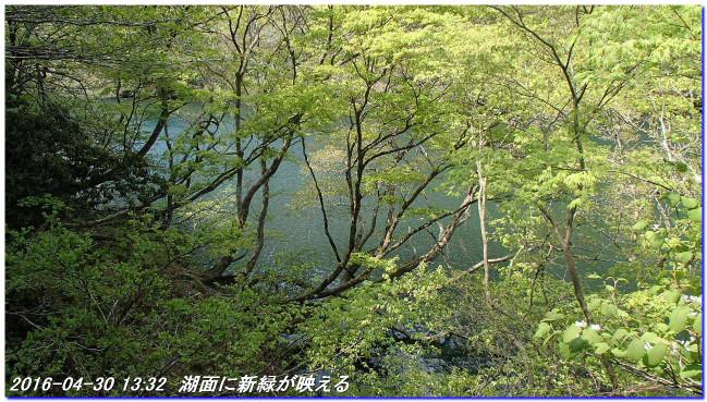 160430_0501_hakodateyama_syojyoko_2
