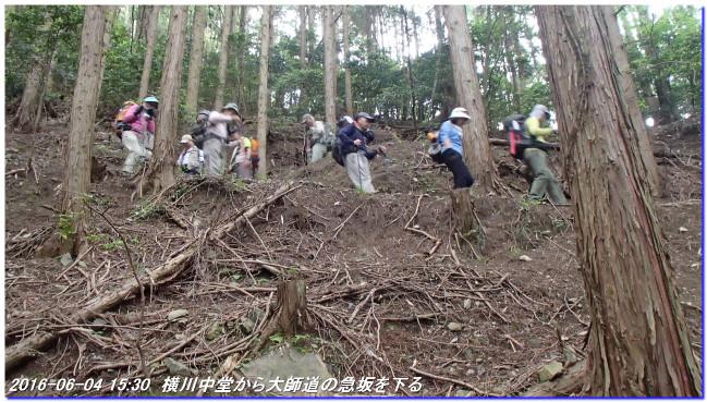 160604_daihiei_yokawagoe_02