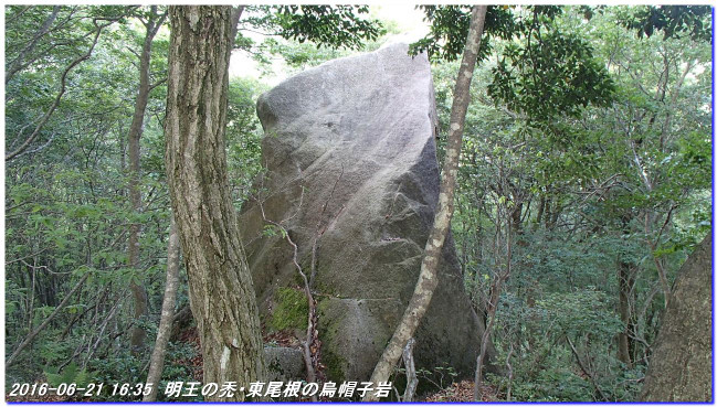 160621_22_meiounohagehigashione_01