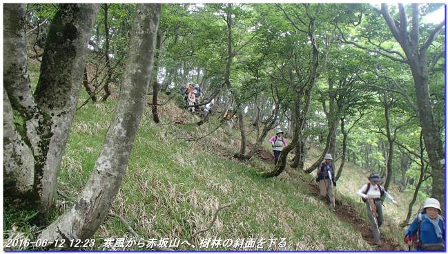 160612_kanpu_akasakayama_01