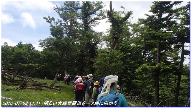 160703_oomine_takatukayama_02