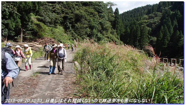 150920_matuya_oomikageyama_dairaike